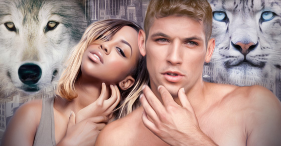 That Shifter Love – A Werecat Loves Werewolf Paranormal Romance Story